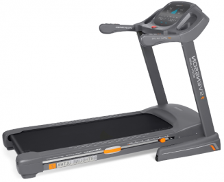 Svensson Body Labs Ortholine Ultra Z